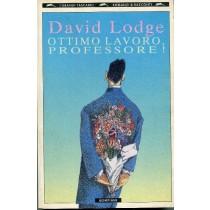 Ottimo Lavoro, Professore David Lodge Bompiani